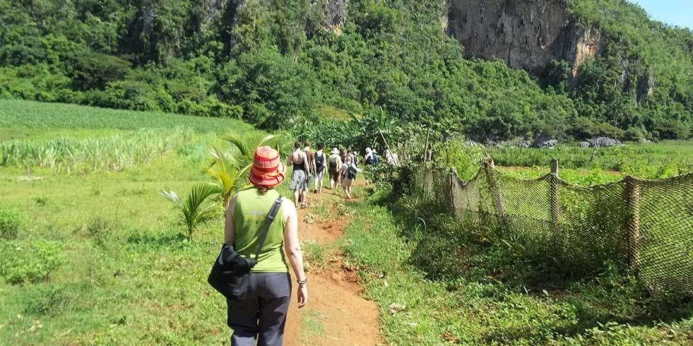 Tour through the Viñales Valley