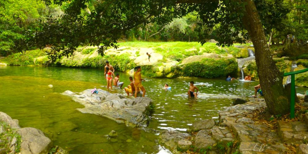 Book The Best Excursions In Cuba Las Terrazas With Canopy
